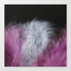 Feathers pink and white Canvas Print