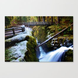 Winter at Sol Duc Canvas Print