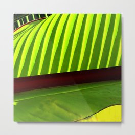 Avant-Garde Luxurious Leaf Super Macro Close-Up Metal Print