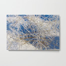 Snow covered area with dry grass in a sunny day Metal Print