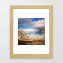 Winter Sky Framed Art Print