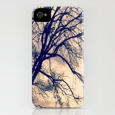Naked Trees Slim Case iPhone (4, 4s)