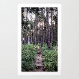 (#108) Mossy Trees Art Print