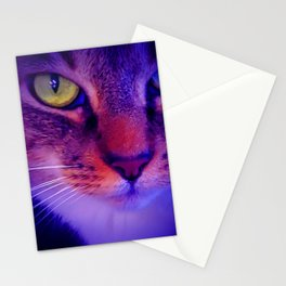 Grey Tabby Photo in Purple Digital Design Stationery Cards