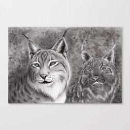 Ever Watchful Eurasian Lynx Canvas Print