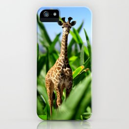 Miniature Giraffe iPhone Case