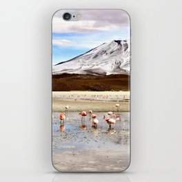Pink Flamingos & a Peak in the Andes iPhone Skin
