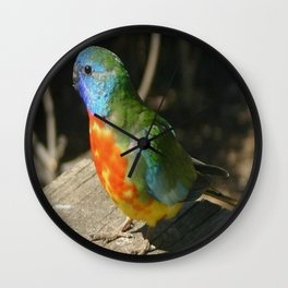 Red Scarlet Chested Parrot Wall Clock
