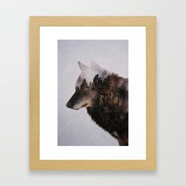 Canis Lupus Framed Art Print