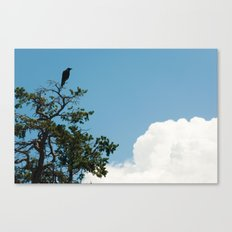 Right away Mary Ann flew in from Atlanta Canvas Print