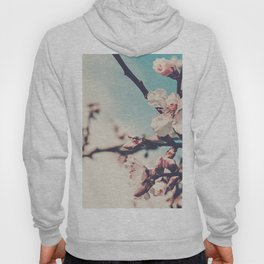 Blossoms 05 Hoody