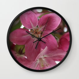 CrabApple Flowers Wall Clock