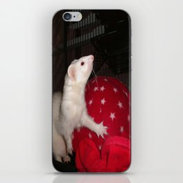 The Ivory Ferret and the Starry Red Bouncy House iPhone Skin