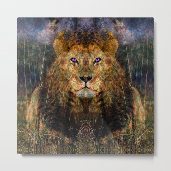 Pacific Lion Metal Print