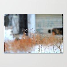 Droplets, 3 Canvas Print