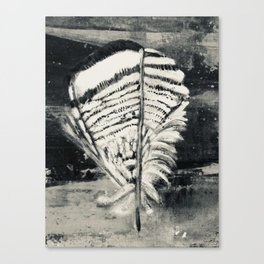 Wood Duck Feather Canvas Print