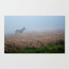 mule. Canvas Print