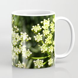 Succulent White and Green Flowers Coffee Mug