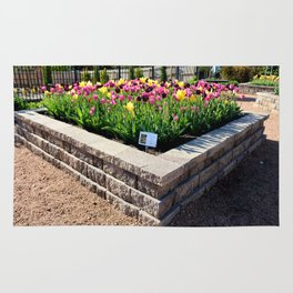 "Muscogee (Creek) Nation - Honor Heights Park Azalea Festival, Tulip ""Critical Mass"" Rug"