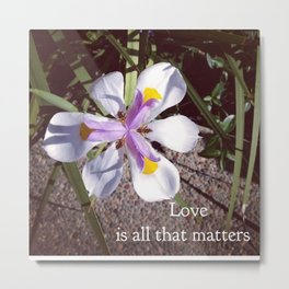Love is all that matters Metal Print