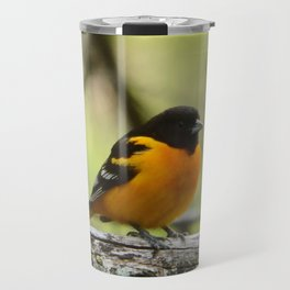 Baltimore Oriole Travel Mug