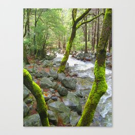 Bridal Falls Runoff 2 Canvas Print