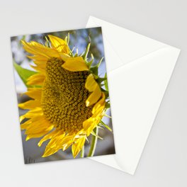 Take Cover [SUNFLOWER] Stationery Cards