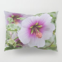 Gentle Hues Pillow Sham