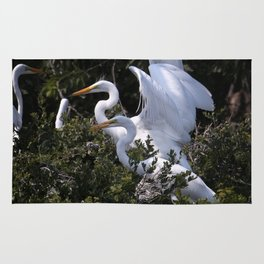 Egret Nest with Fledglings in Rookery Rug