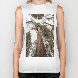 Sequoia Stretch - Nature Photography Biker Tank