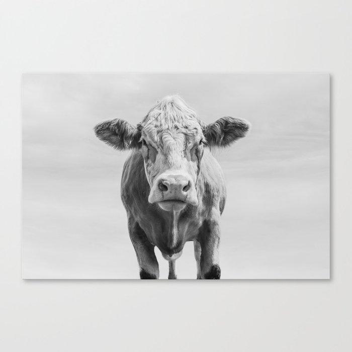 Animal Photography | Cow Portrait Minimalism | Farm animals | black and white Canvas Print