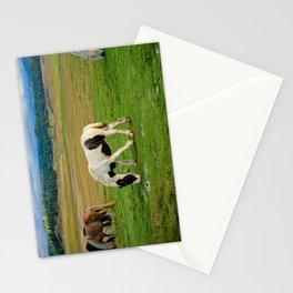 Gypsy Vanner Filly 5506 - Colorado Stationery Cards
