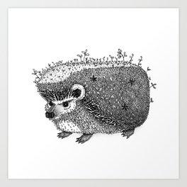 Hedge Hog Art Print