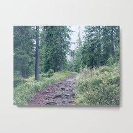 Norwegian Wood Metal Print