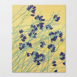 Smoke Tree Bloom Canvas Print