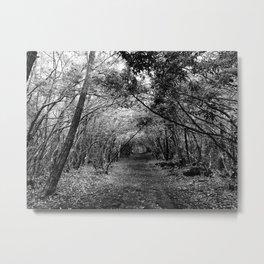 Desolate // Aokigahara  Metal Print