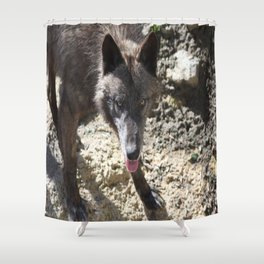 Gray Wolf 4 Shower Curtain