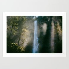 Enchanted Forest Waterfall Art Print