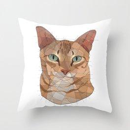 Alan Throw Pillow