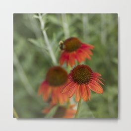 Out In Front Metal Print