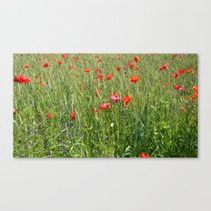 Poppies float Canvas Print