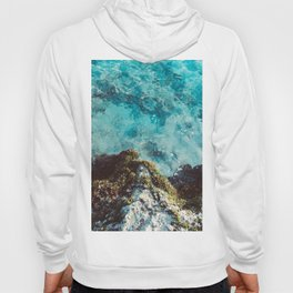 Blue Coast Hoody