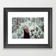 Voices in Winter Framed Art Print