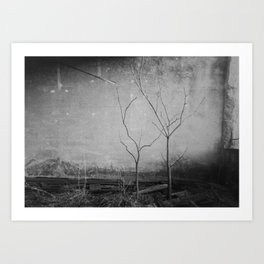Out of the light of the sun Art Print