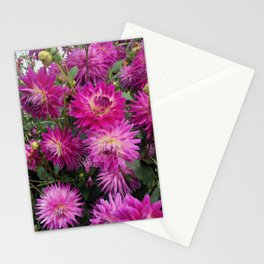 Pretty in Pink Dahlia 2 Stationery Cards