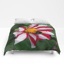 Busy bee Comforters