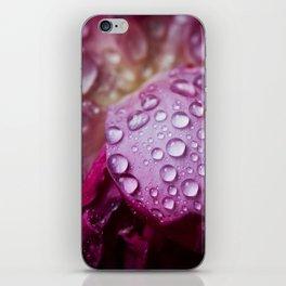 Waterdrops on pink flowers iPhone Skin