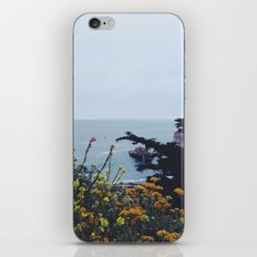 Floral Coast at Dusk iPhone & iPod Skin