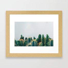 cactus sea Framed Art Print