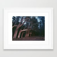 fitzgerald Framed Art Prints featuring Fitzgerald Marine Reserve by Miles Lehman